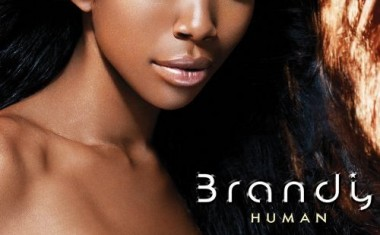 BRANDY BREAKS COVER