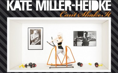 KATE MILLER-HEIDKE : Can't Shake It