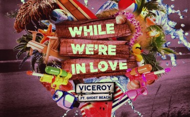 VICEROY : While We're In Love