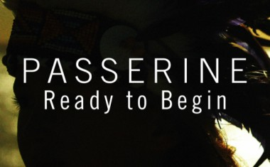 PASSERINE : Ready To Begin