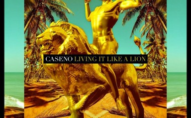 CASENO : Living It Like A Lion