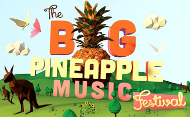 PINEAPPLE LINE-UP LANDS