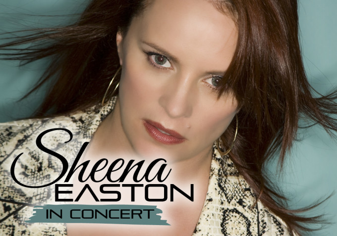 Sheena-Large-Web-Banner (Abstract Ent)