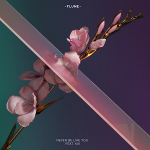 Flume ftg Kai Never Be Like You
