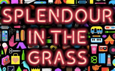 SPLENDOUR IN THE GRASS LINEUP LANDS