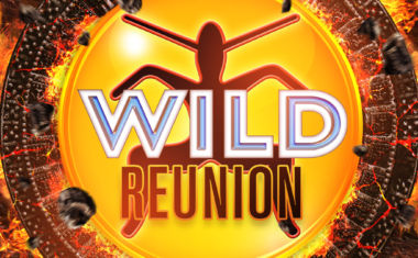 WILD REUNION WINNERS